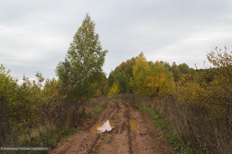 Дорога на Волково
