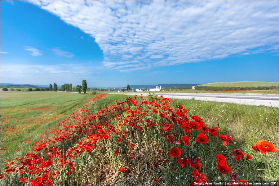 Крым в стиле Клода Моне