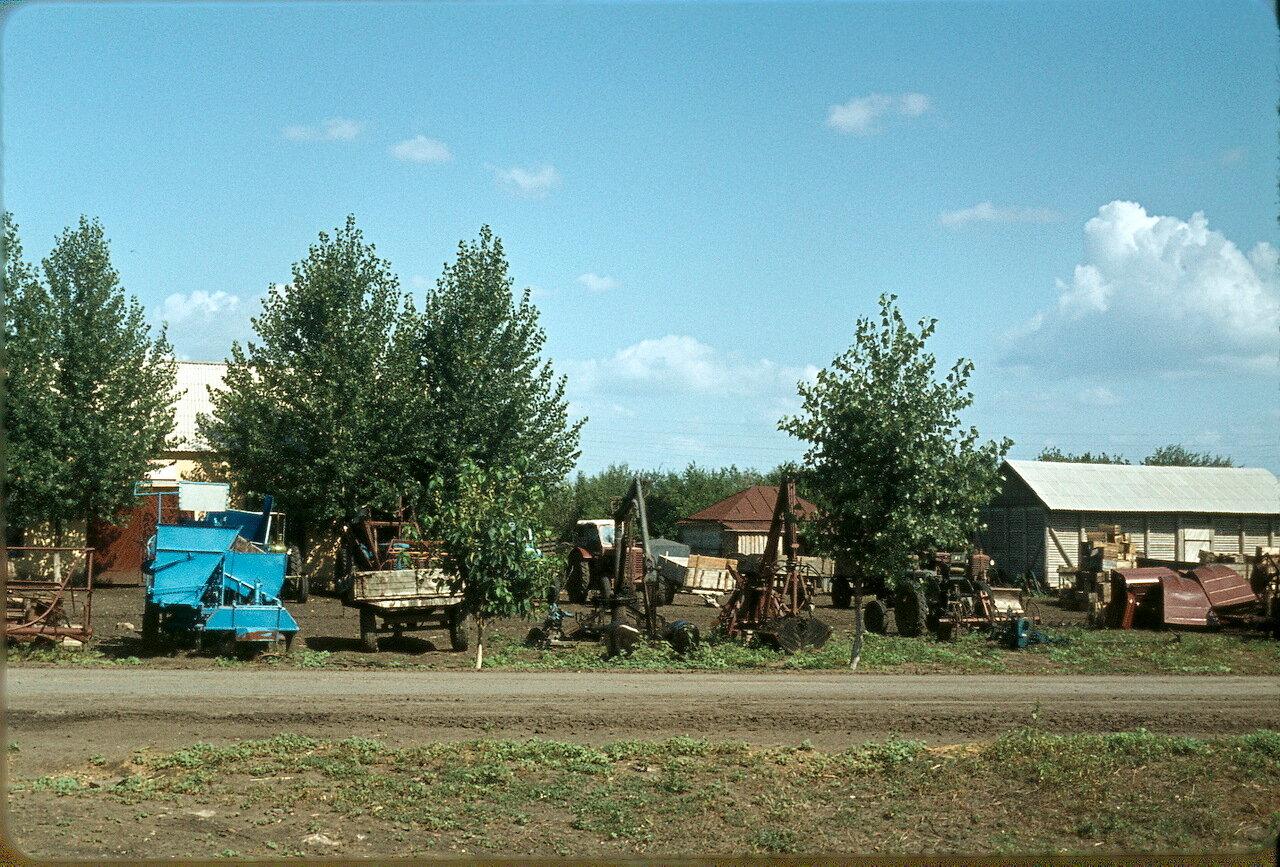 Краснодарский край. Совхоз «Красное».