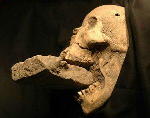 В Польше археологи раскопали могилу с настоящими вампирами
