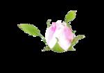 цветы_розовые (8).png