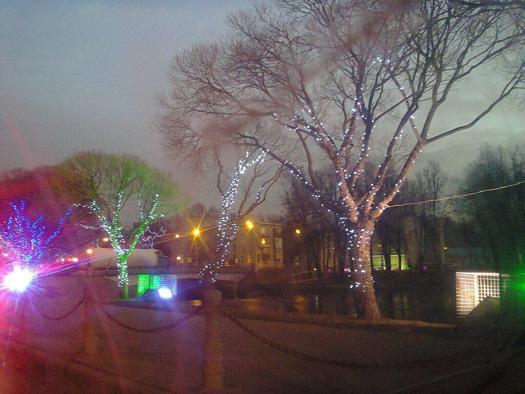 Светящиеся деревья на бульваре Свободы (берег Ижорского пруда) в городе Колпино (Колпинский район Санкт-Петербурга), декабрь 2015 года.
