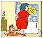холодильник - инструкция.jpg