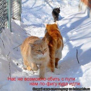 http://img-fotki.yandex.ru/get/9172/194408087.5/0_b1210_d142fbba_M.jpg