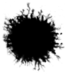 6 (114).png