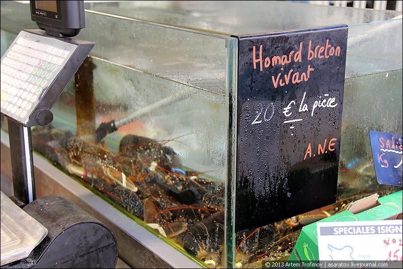 Живые омары по 20 евро