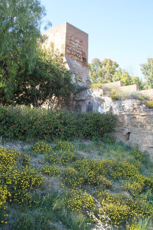 Малага. Дорога к крепости Хибральфаро