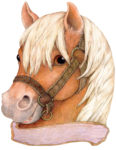 horse_2014 (21).png