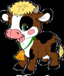 корова,бык