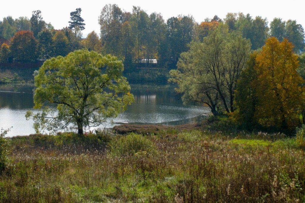 Пруд, Рождественно-Суворово