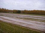 Убранная полоса газонного поля у Кошелевки