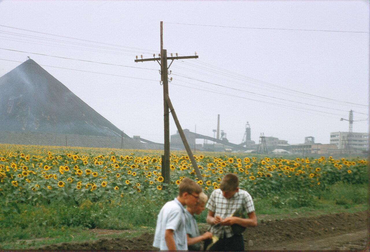 Боково Платово