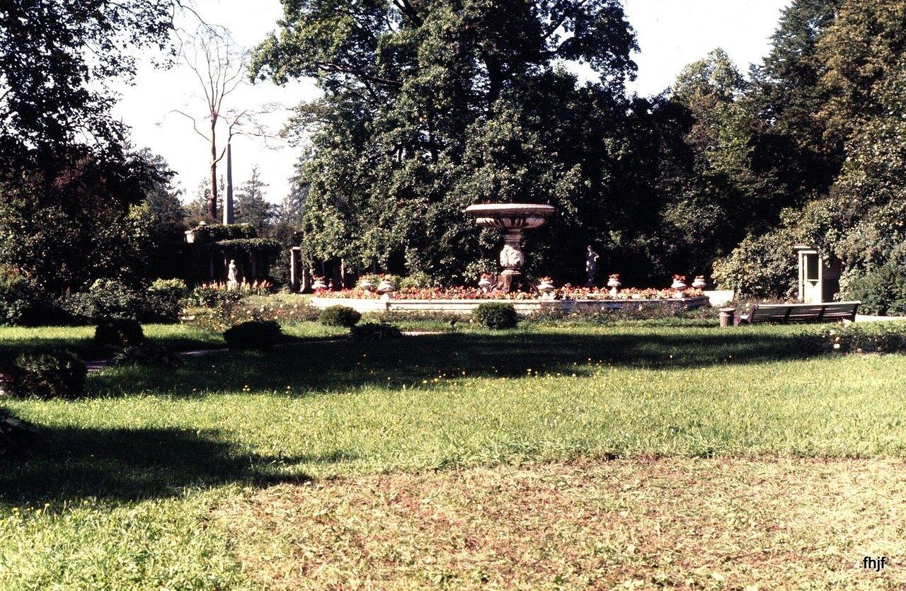 garden on route to buses - Ektachrome