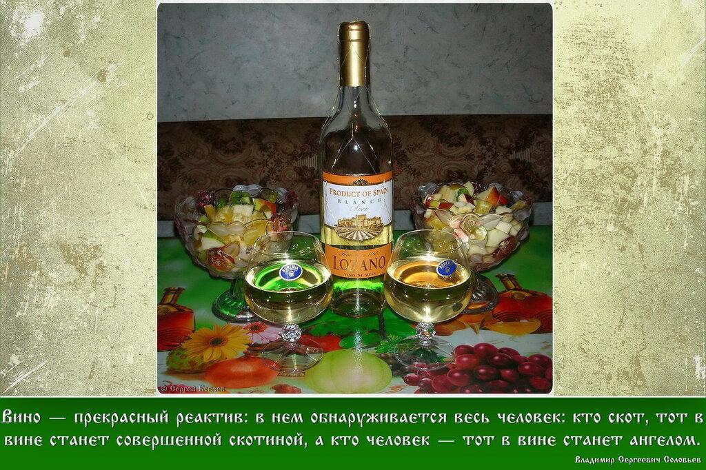 2009-01-19 22-16 8748 Вино - прекрасный реактив.jpg