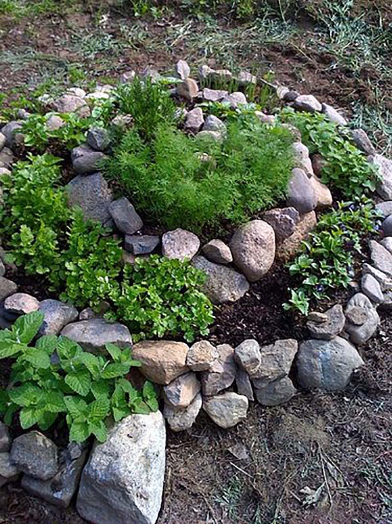 На такой клумбе-улитке можно посадить невысокие цветы, например маргаритки или анютины глазк