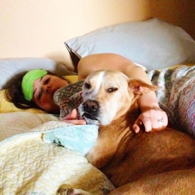 © schulerbenson/imgur      3. «Моей собаке нравится моя девушка»