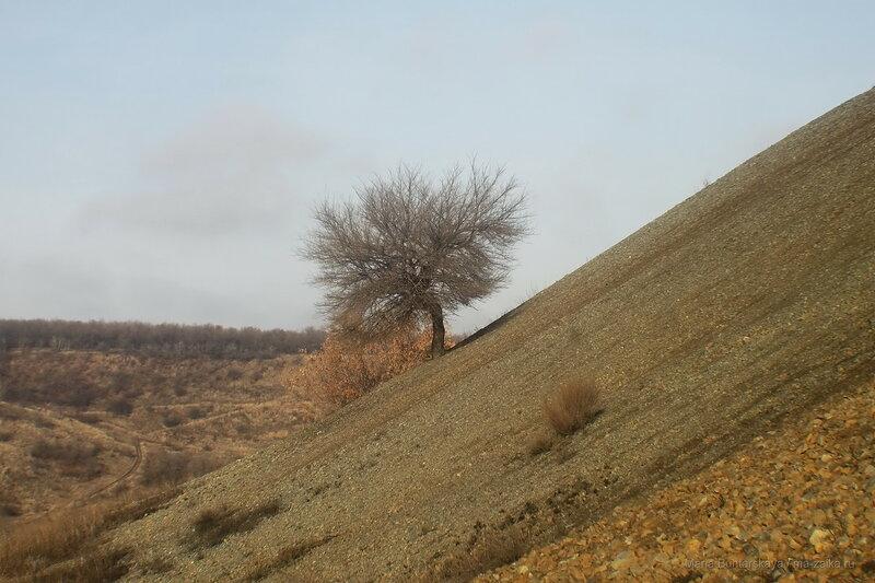 Саратов - Рейник - Солнечная поляна, 21 ноября 2017 года