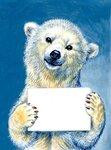 Я белый медведь.jpg