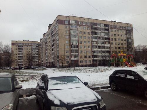 Бухарестская ул 66к1