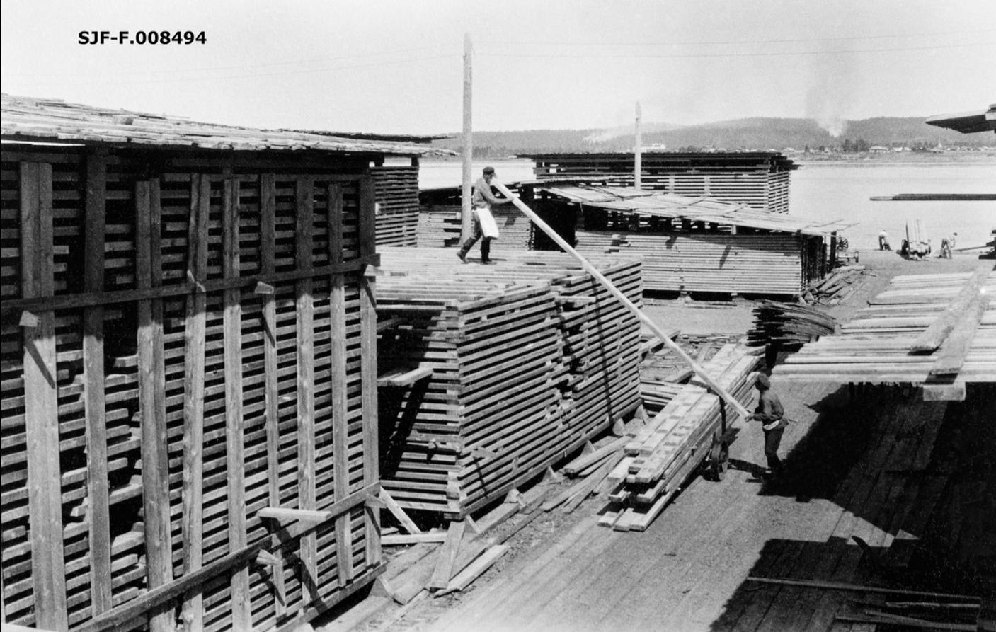 Лесопильный завод Ко. Онежского Лесного Торга. Погрузка досок из пильного цеха на вагоны