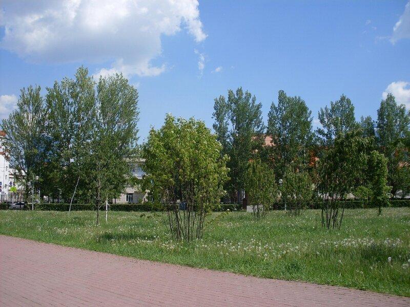 Городской пейзаж.