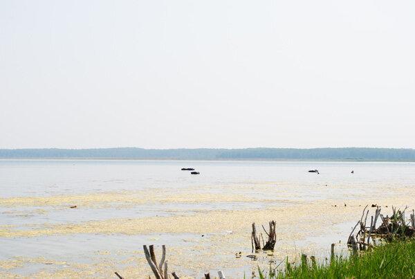 Озеро слечебными грязями