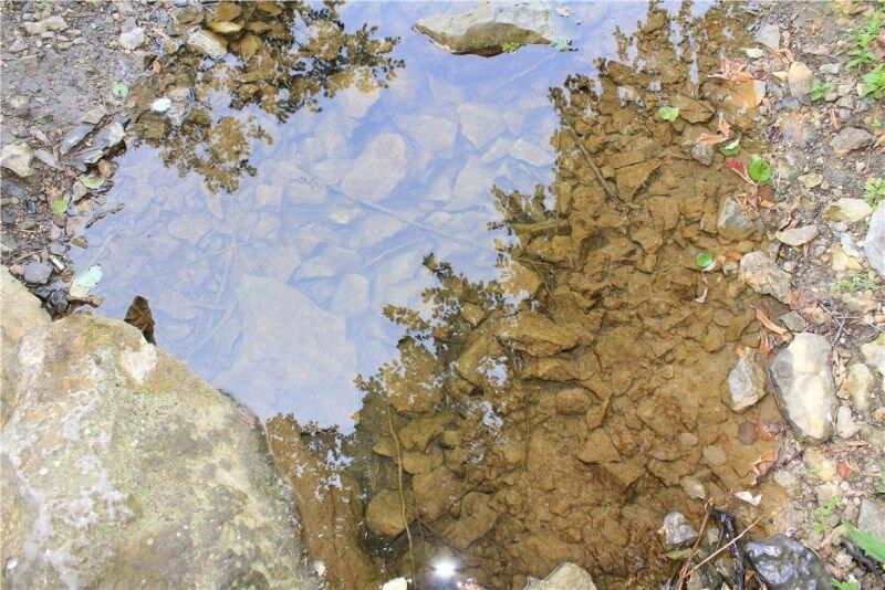 Прозрачнейшая вода (03.07.2013)