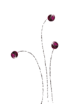 Love Essence (109).png