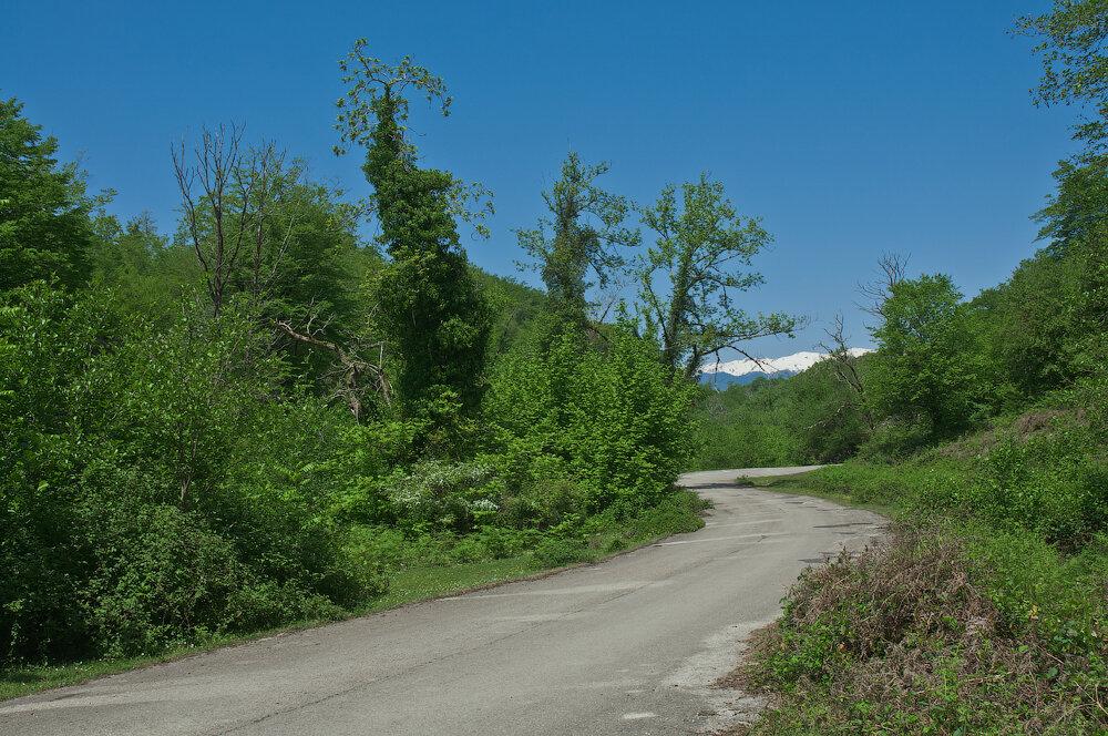 дорога к Мысре