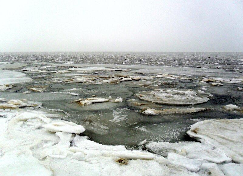У моря зимнего