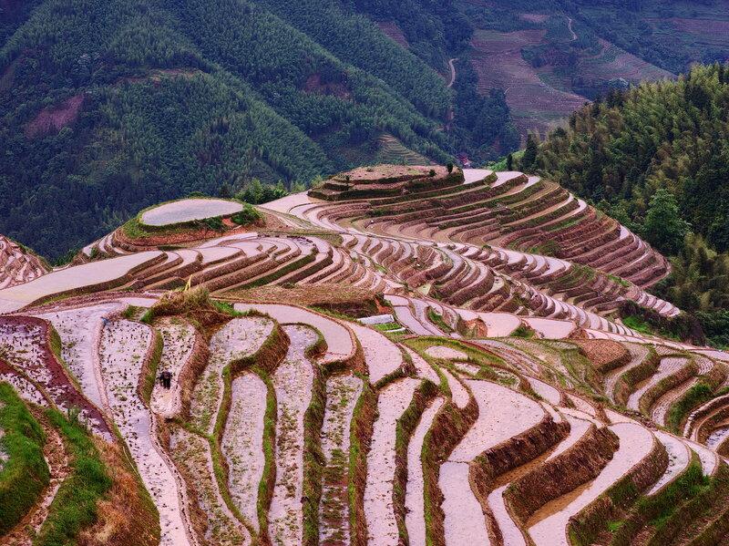 Рисовые террасы деревни Тяньтоу! Потрясающе!