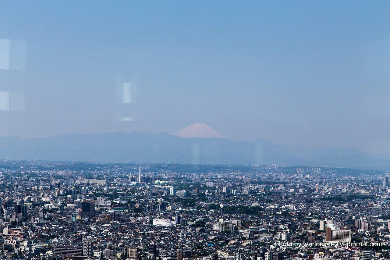 гора Фудзи-сан