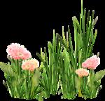 MRD_EggStraSE_floral-grass cluster.png