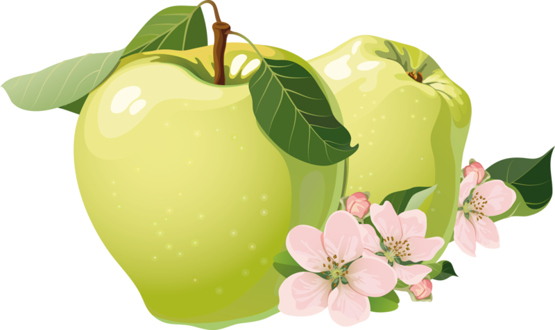 fruits (2).png