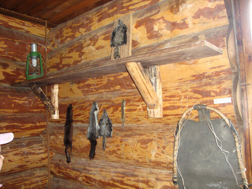 20130612 - Визит-центр заповедника Хакасский в Абазе