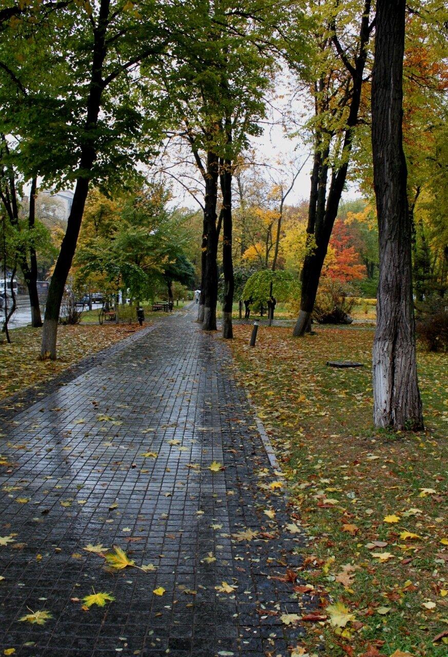 Аллея парка Славы