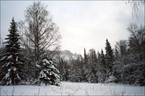 Лес насклонах Большого Иремеля