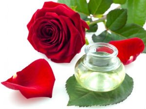 розы стихи
