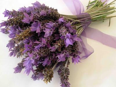 Лаванда, аромат дома