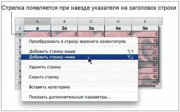 Рис. 3.12. Пример использования заголовка строки для вставки строки в таблицу