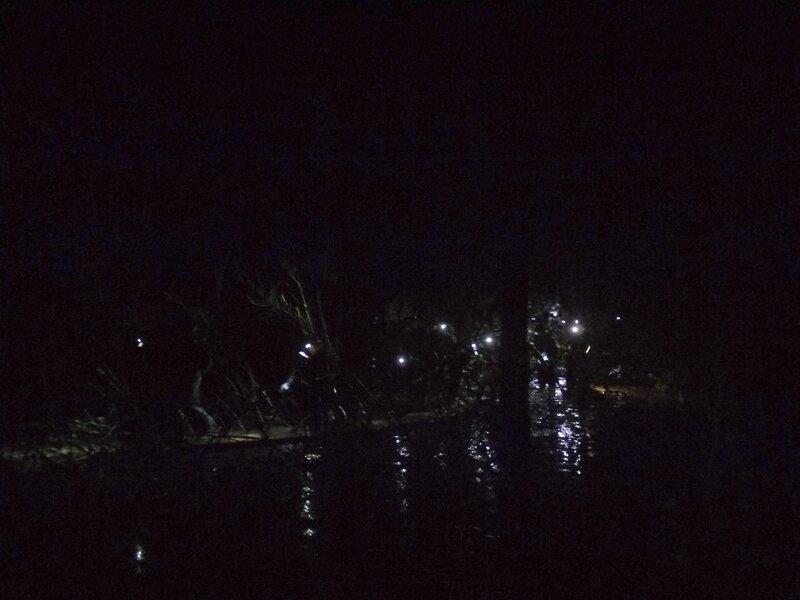 Ночной болотинг у бобровой запруды