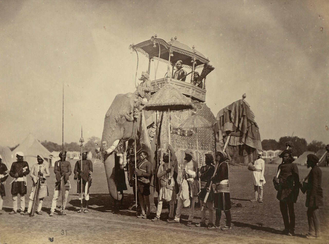 72. Пратап Сингх, махараджа Орчха на парадном слоне