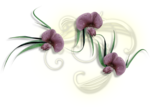 Love Essence (120).png
