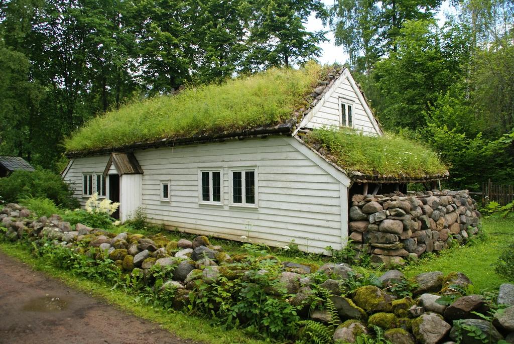 Расология, антропология, генетика : трава на крышах норвегии.