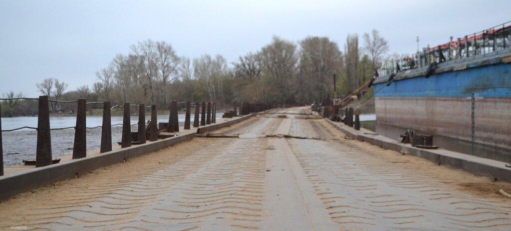 Понтонный мост