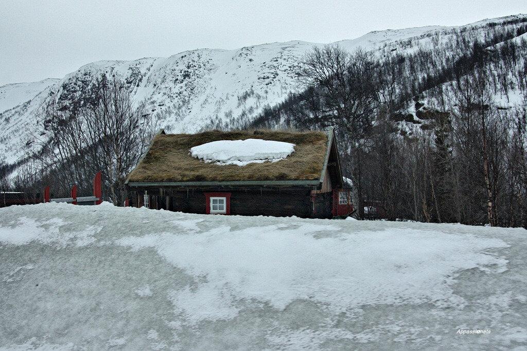 Норвегия из автобусного окна