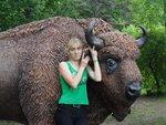 Поездка к зубрам в Приокско-Террасный заповедник