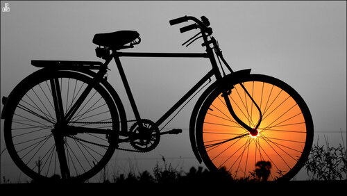 Закат в лучах велосипеда