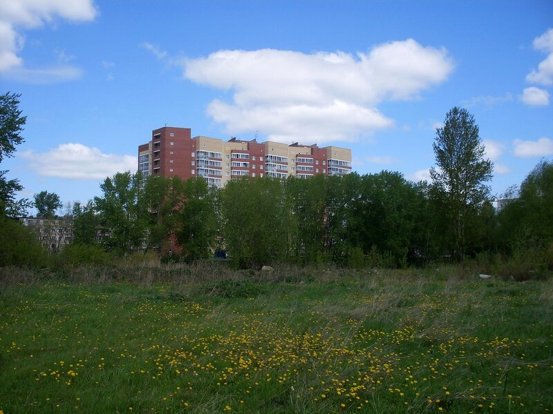 Городской пейзаж. Вид на ул. Пети Калмыкова.