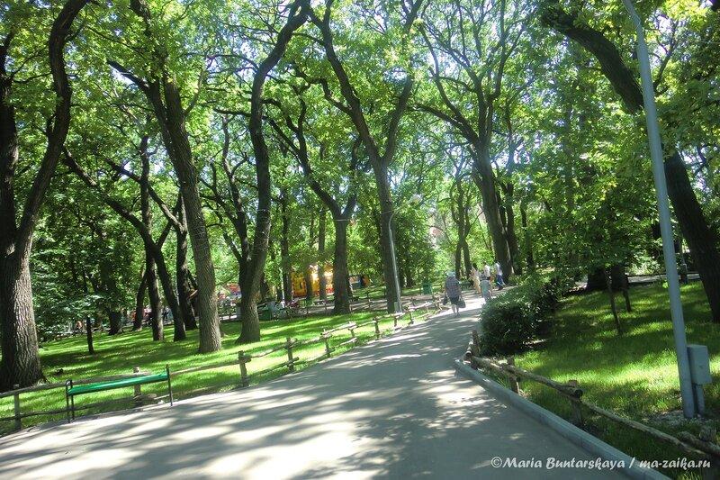 Городской парк культуры и отдыха им.Горького, 03 июня 2013 года